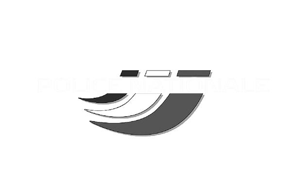 POLICE_NAT_GRIS.png