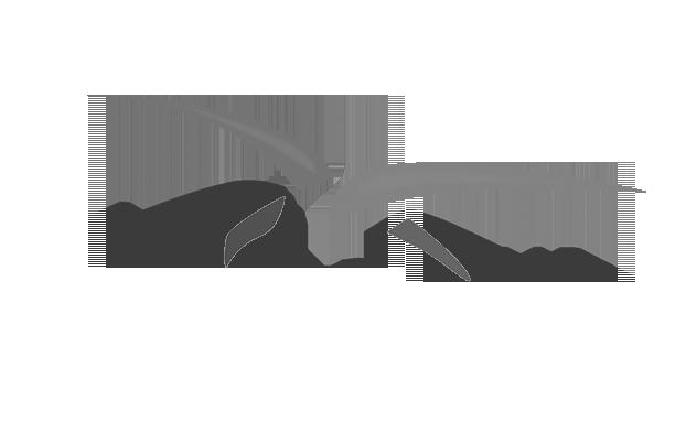 ARMEE_DE_L_AIR_GRIS.png