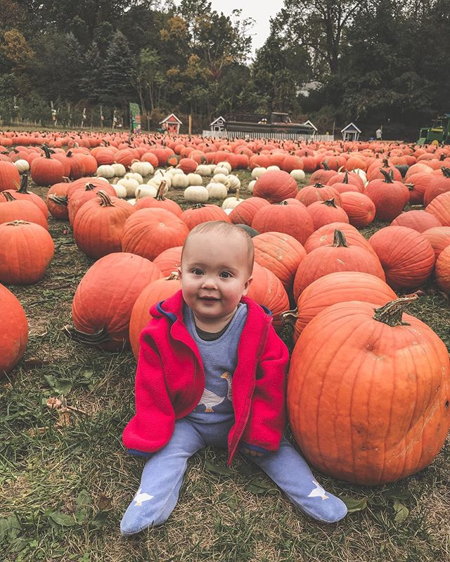 Cutest pumpkin in the patch! 📸cred: @maxems & smiles thanks to @lydmonster92 #pumpkinhead #alsoyouhaveahugehead #spookelyhead #momsfavoritetimeofyear