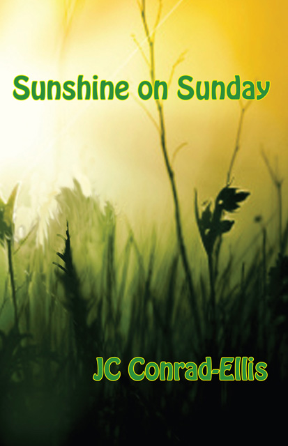 """Sunshine on Sunday - High school graduates eager to embrace their independence, the girls are armed with their trademark charisma, style and wit on a journey that includes college for some, heartache, new love, additions to the friendship circle and a controversial discovery for one of the ladies. On their personal paths of self-affirmation, the ladies are surprised to learn that """"like them"""" their mothers are complex women seeking friendship and love. Readers will cheer when a character's mother reinvents herself and starts a new chapter in her own life."""