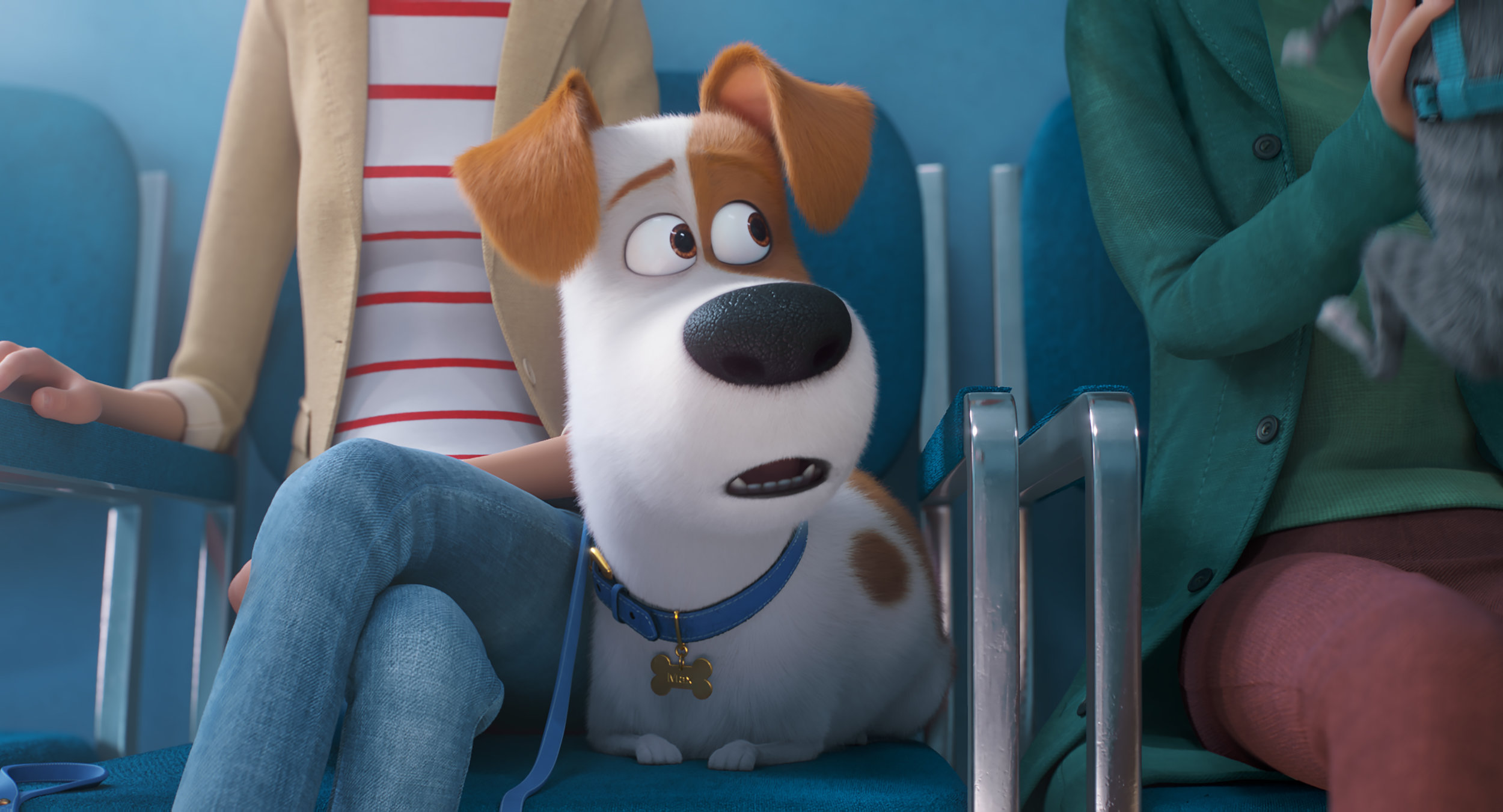 "The terrier Max (voiced by Patton Oswalt) nervously waits to see the vet, in a moment from the animated ""The Secret Life of Pets 2."" (Image courtesy Illumination / Universal Pictures.)"