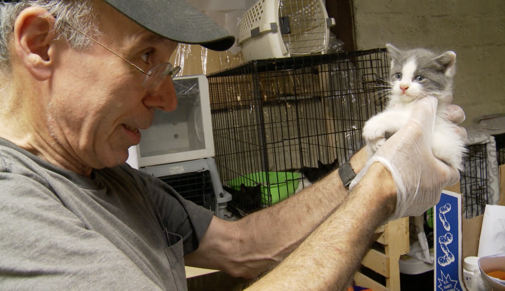 """Stuart Seit holds a kitten he found on the streets of Brooklyn, in a scene from the documentary """"The Cat Rescuers."""" (Photo courtesy of 24 Cats Per Second.)"""