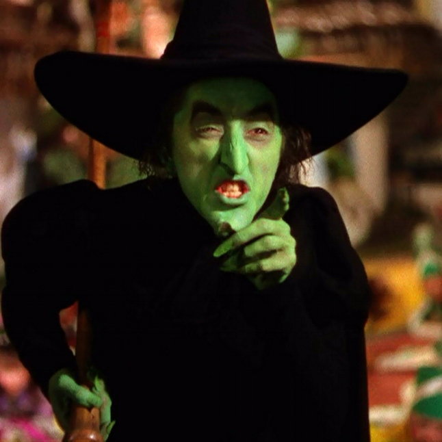 The Wicked Witch of the West from the Wizard of Oz. One of my earliest memories of an on-screen witch and yes- i was scared!!