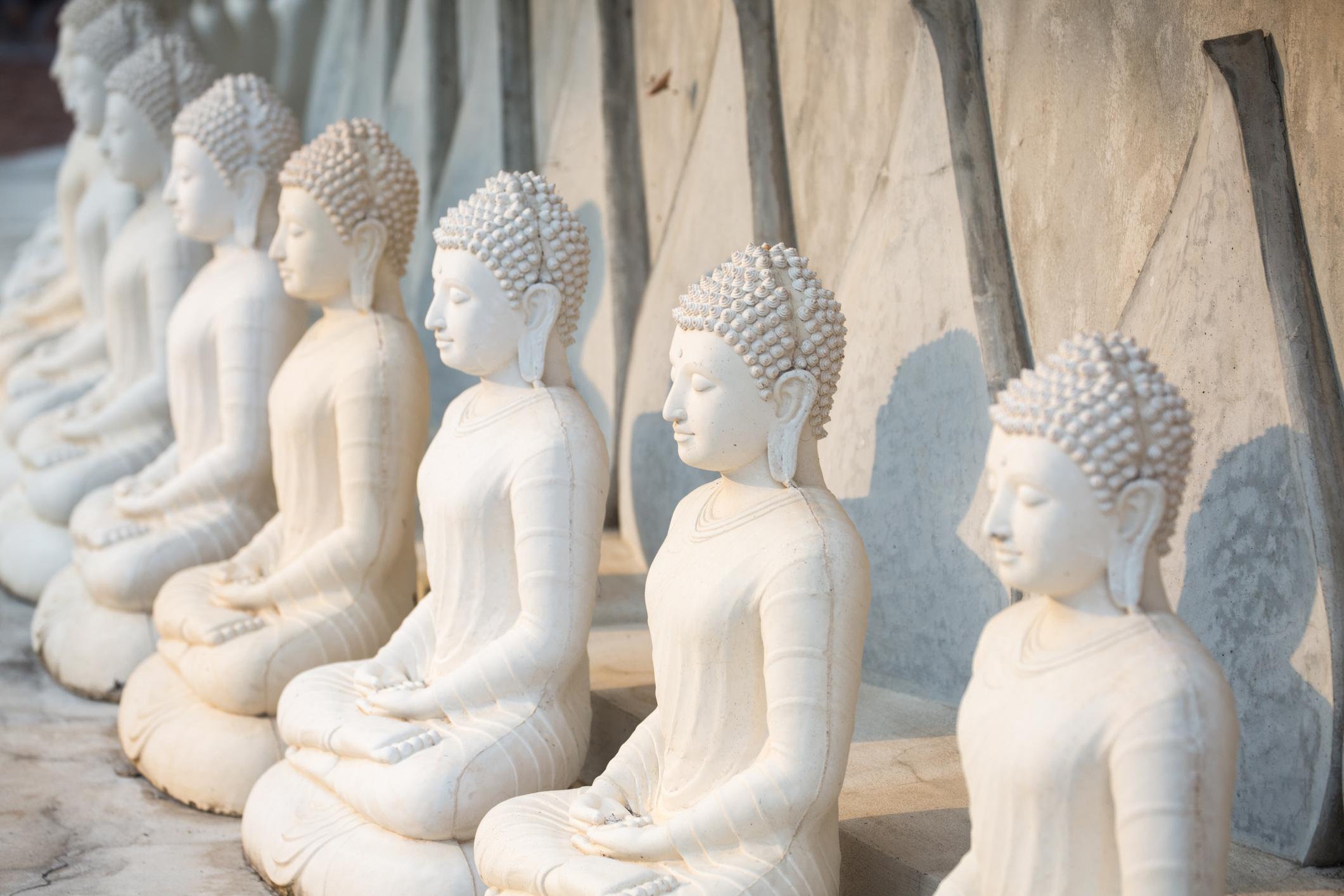 Seeds of Satya (Truth): Meditation, Buddha