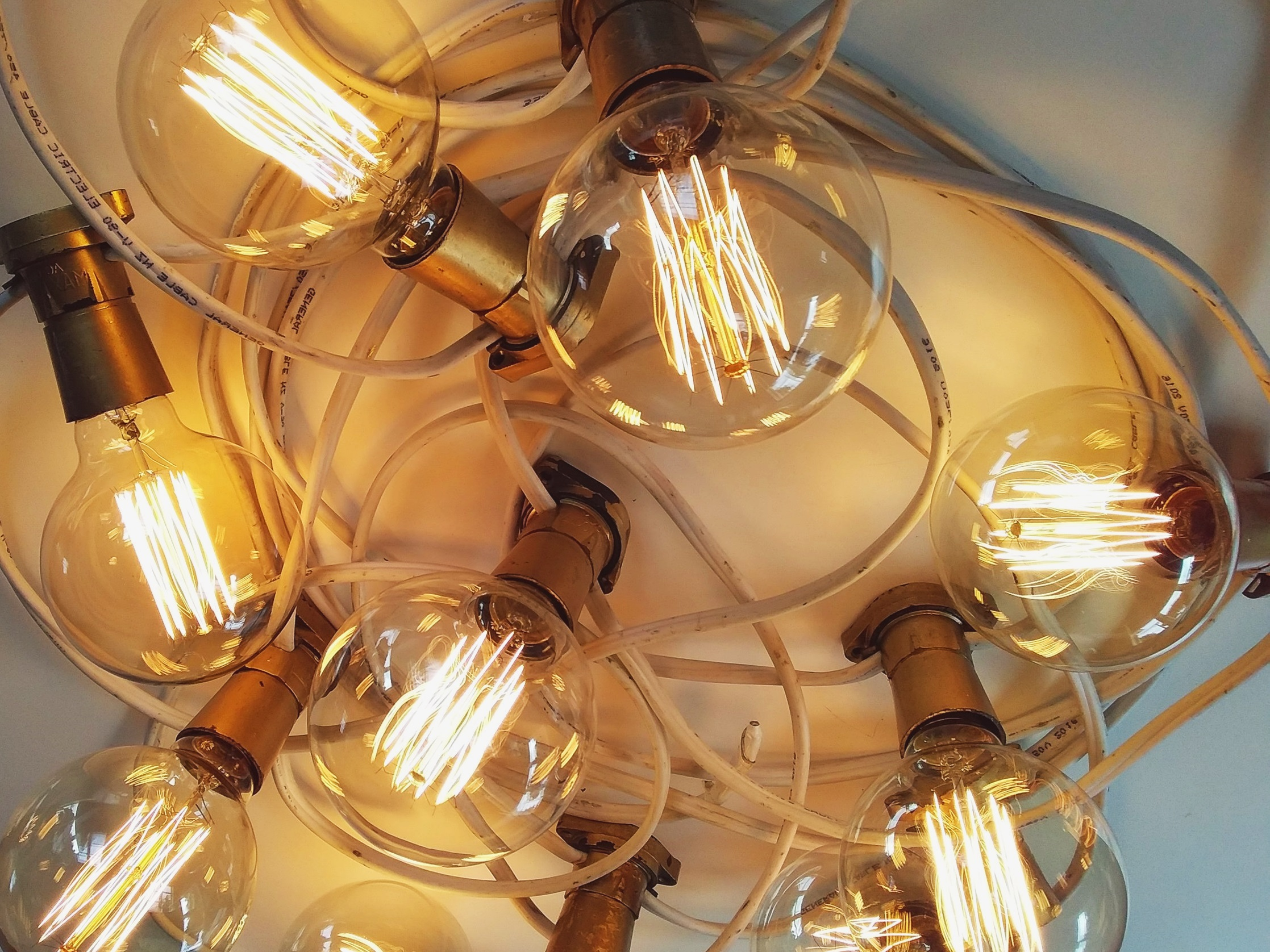 with globe shaped filament bulbs - 10m $75.00, 15m $90.00