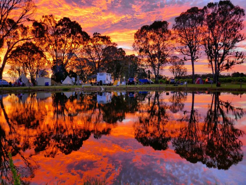 roy_sunset.jpg