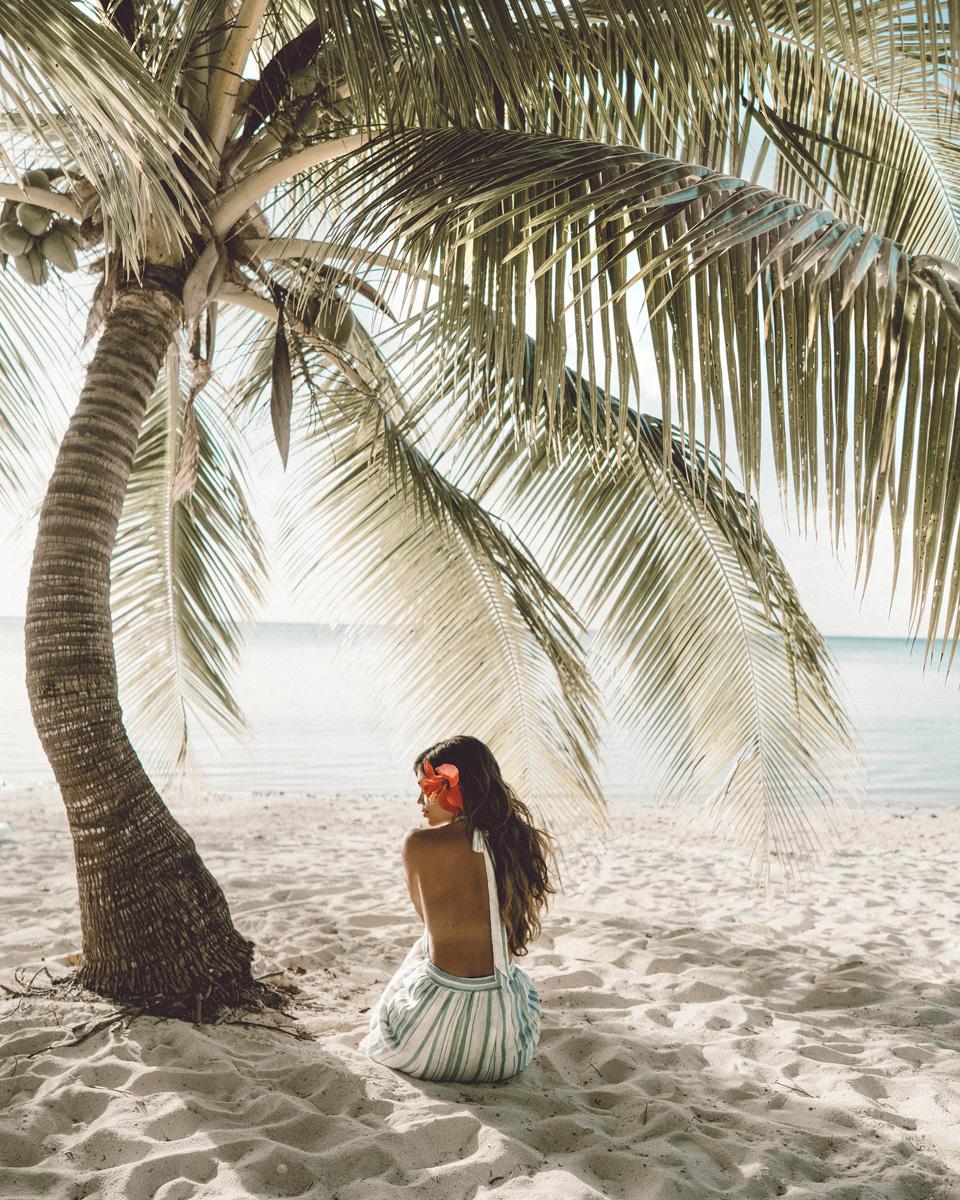 AwayLands-AlohaPrint.jpg