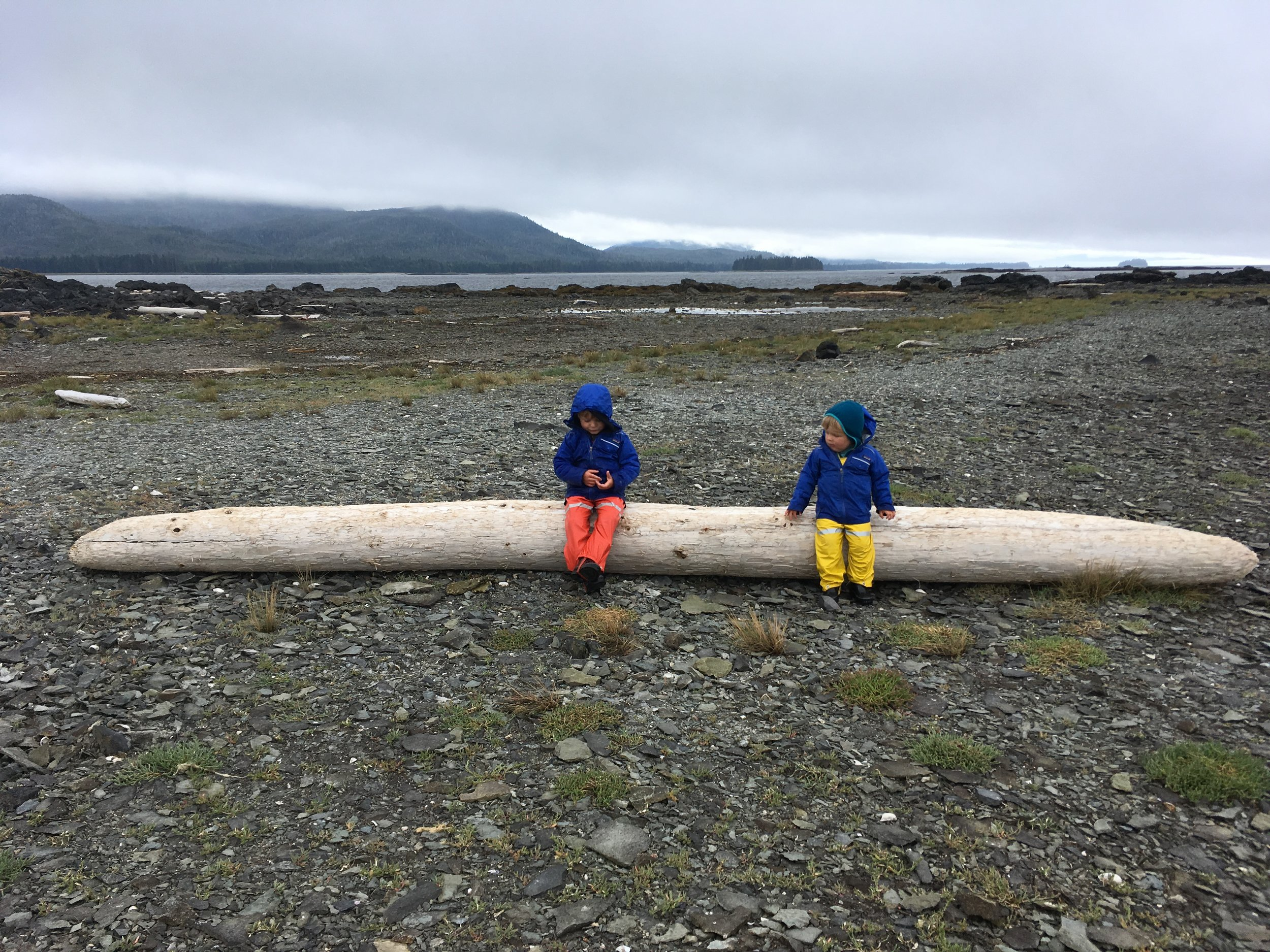 """""""OK, now here's our log."""""""