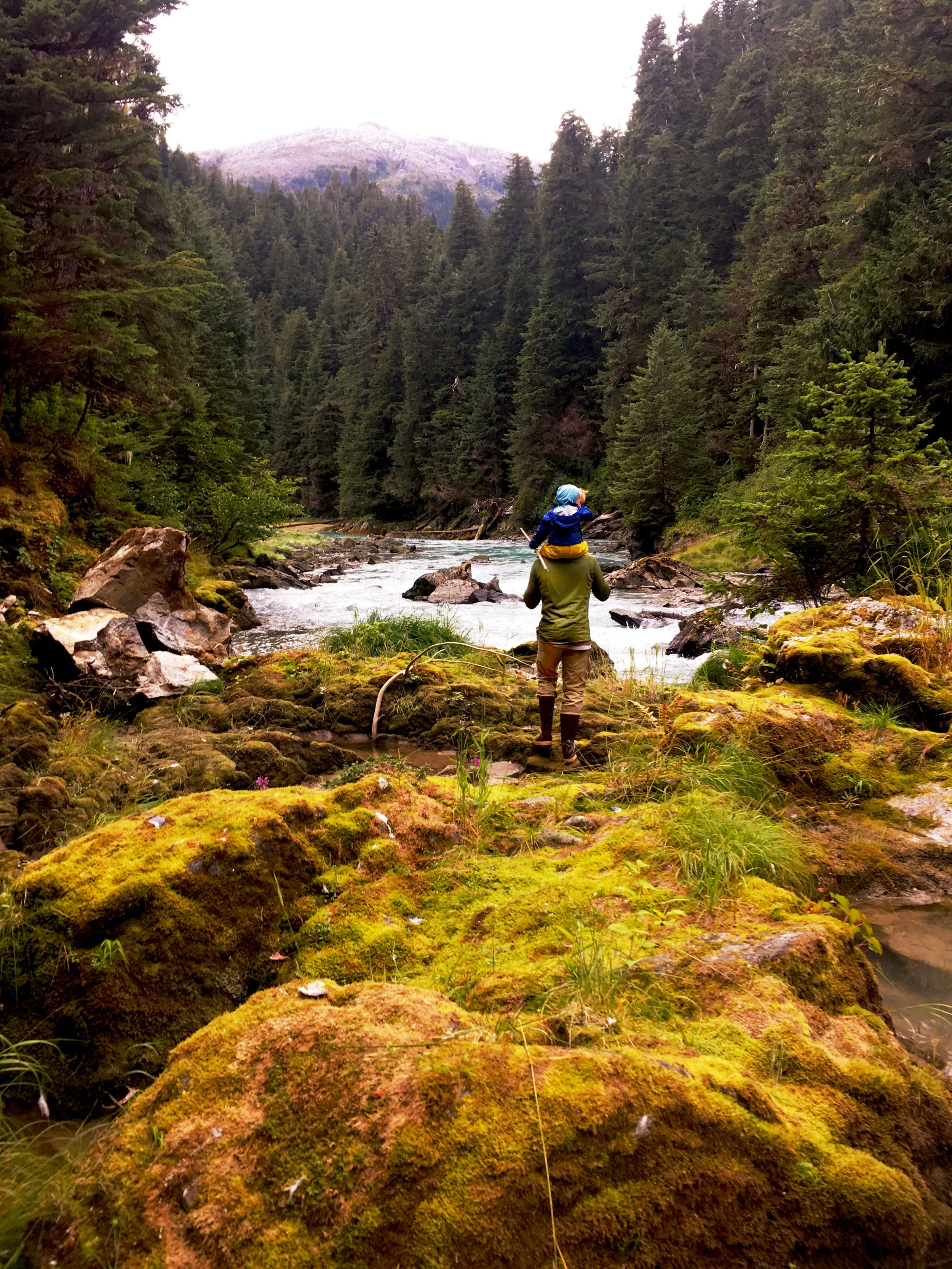 Hiking up a salmon stream to a waterfall.