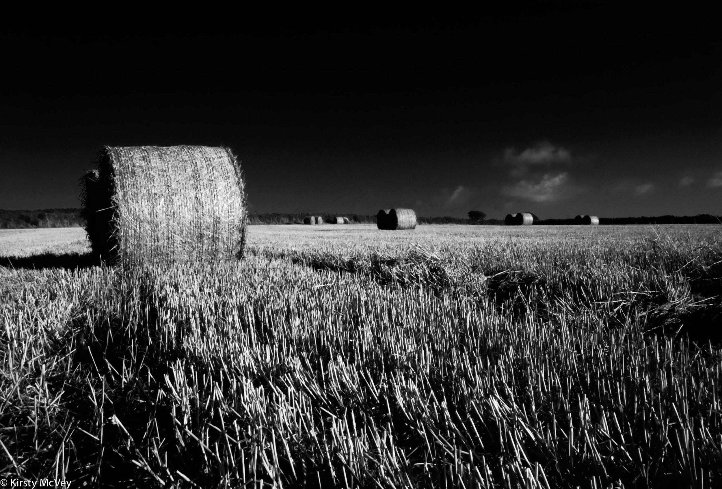 20100823-Hay bales(16.9mb).jpg