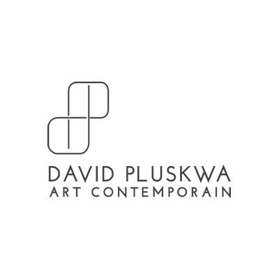 06-DavidPlusqwa.jpg