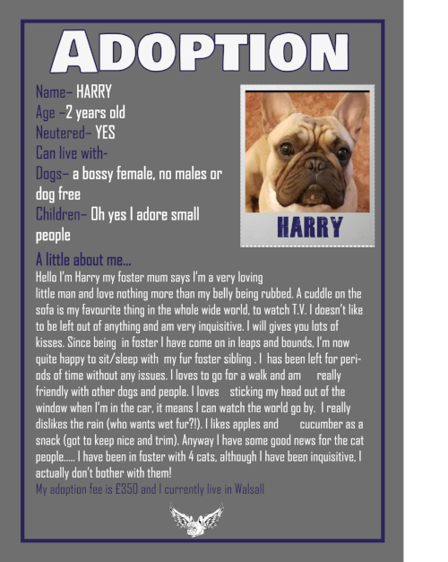 HARRY ADOPTION 2018.png