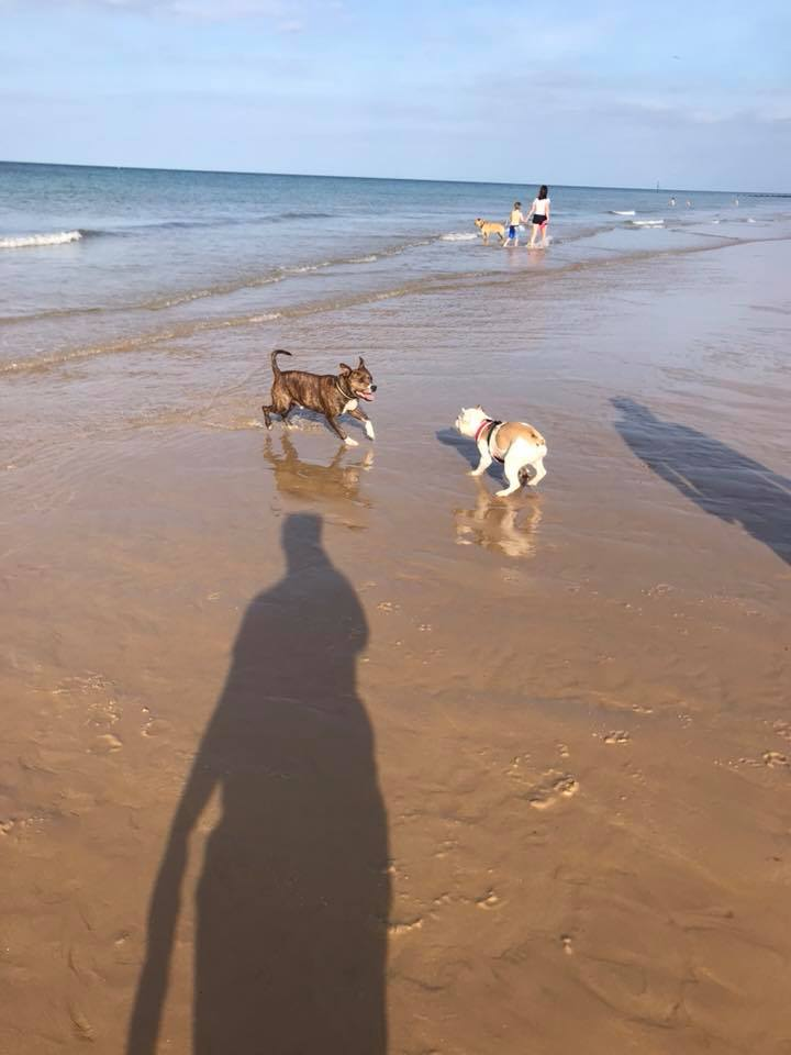 FBS Martin chasing his cousin on his beach break
