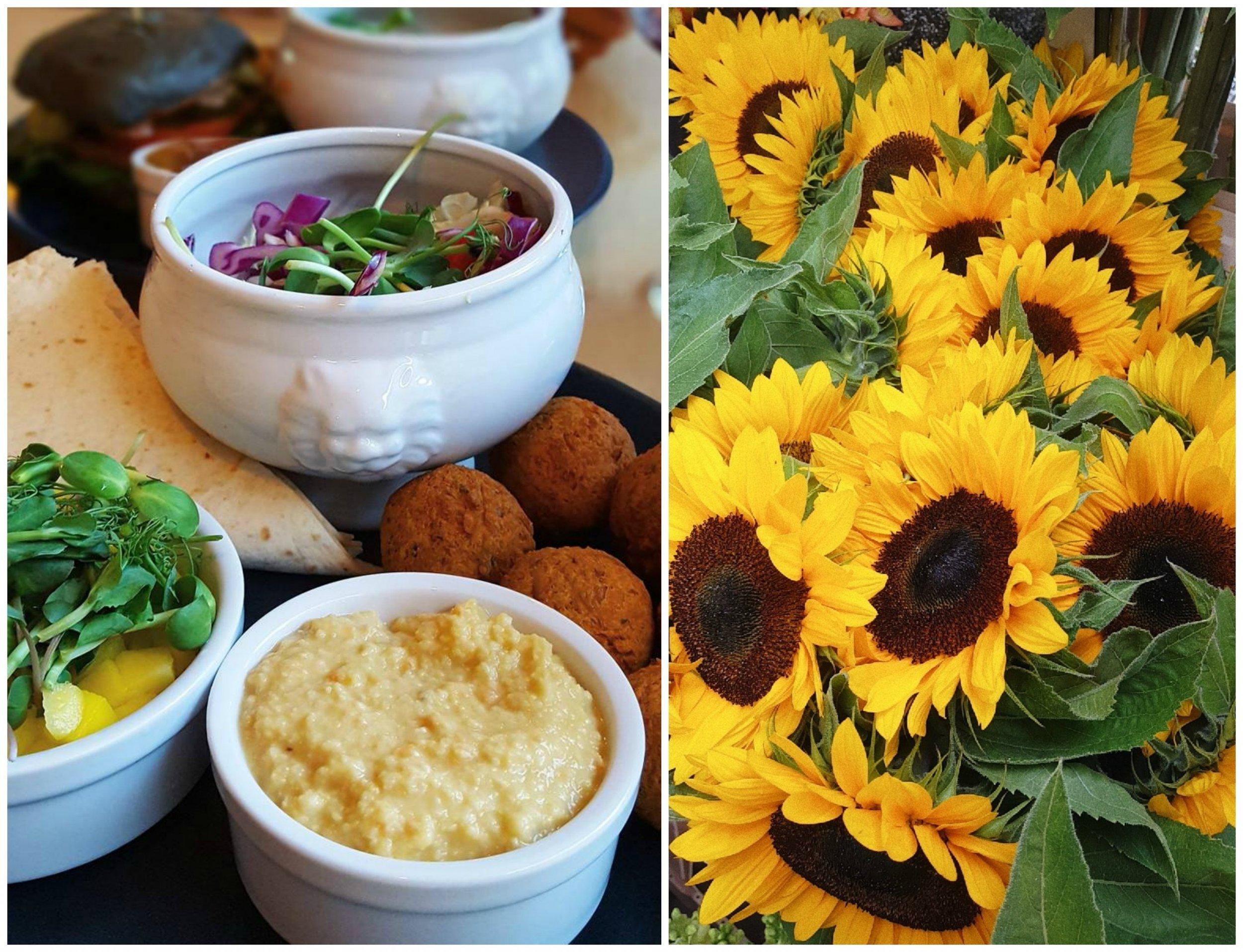 Falafel - Falafel med mango, hummus, ärtskott och tortillabröd!