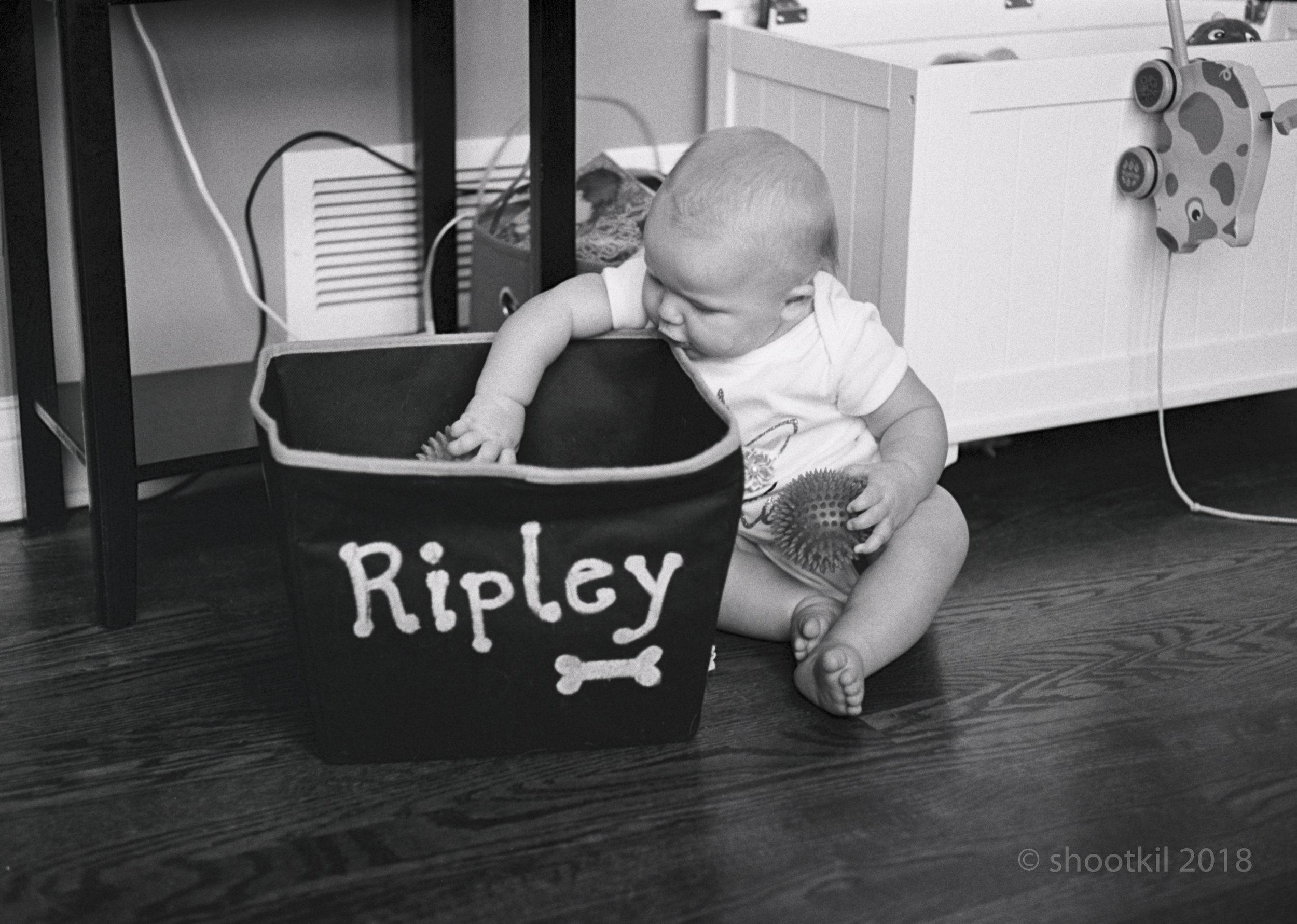 Ellie_Ripley_Toys.jpg