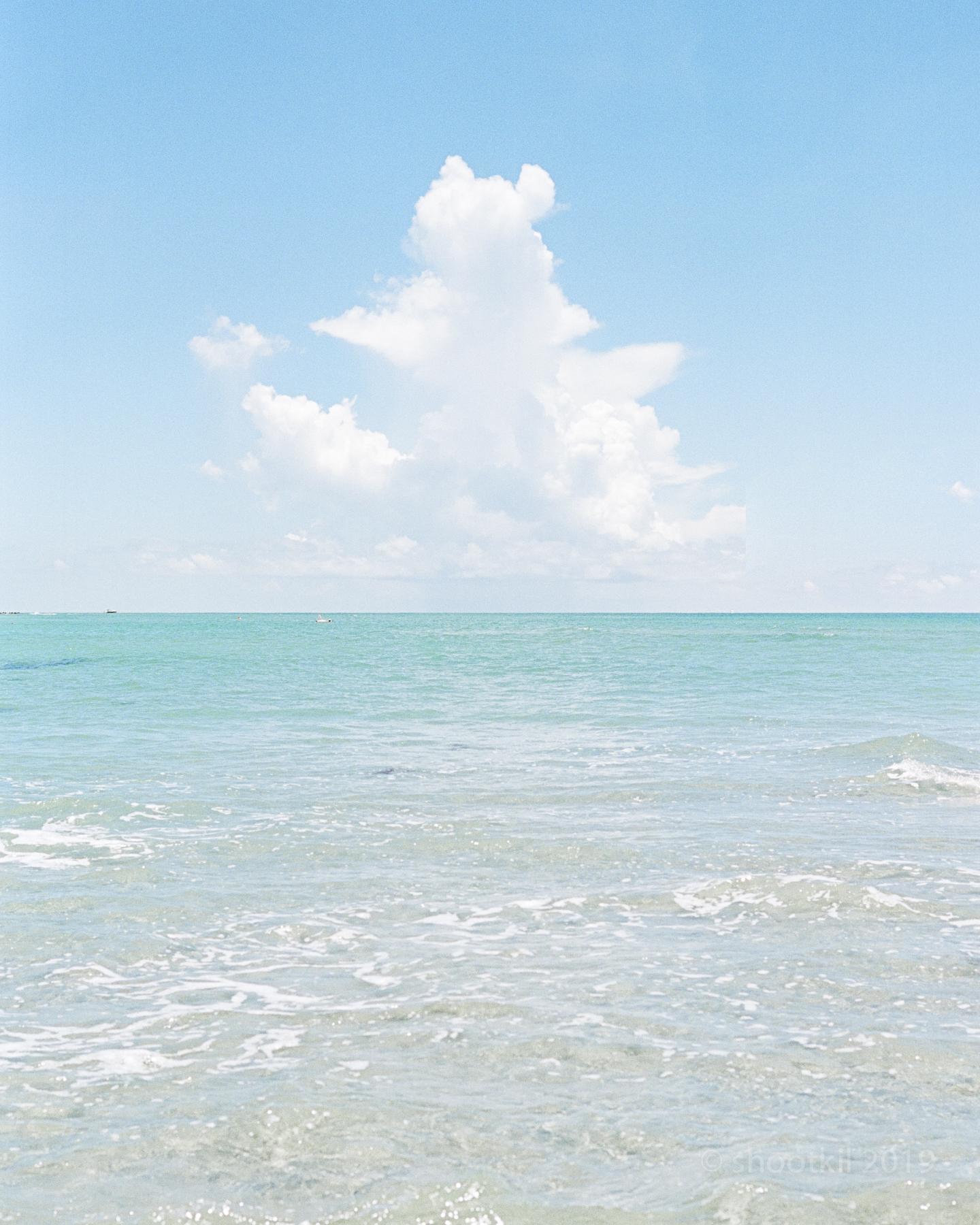 Dog-Beach-Ripley-07272019-16.jpg