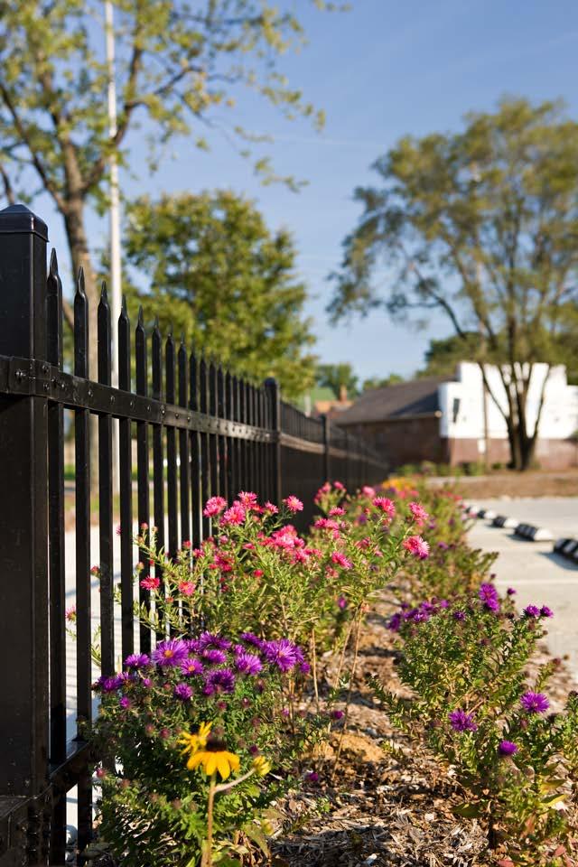 KIB_Fleck_Photo_01 fence.jpg