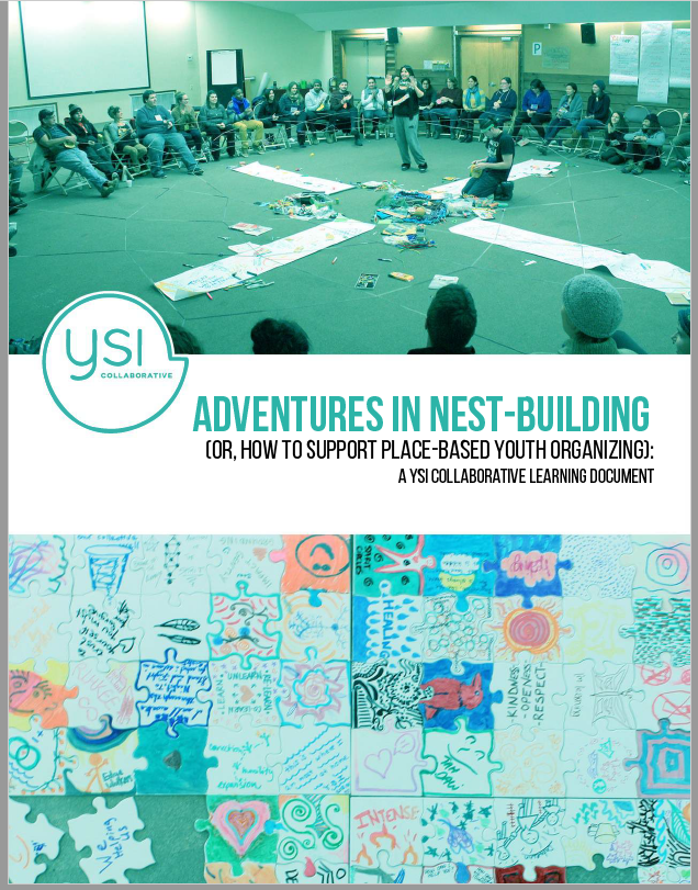 YSI report cover.png