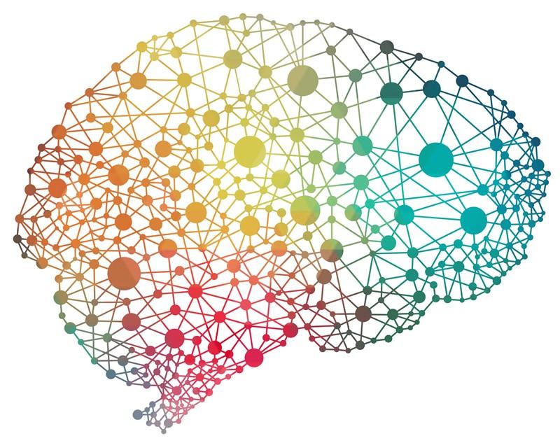 """""""Les neurosciences vont faire des progrès énormes dans la décennie à venir"""" -"""