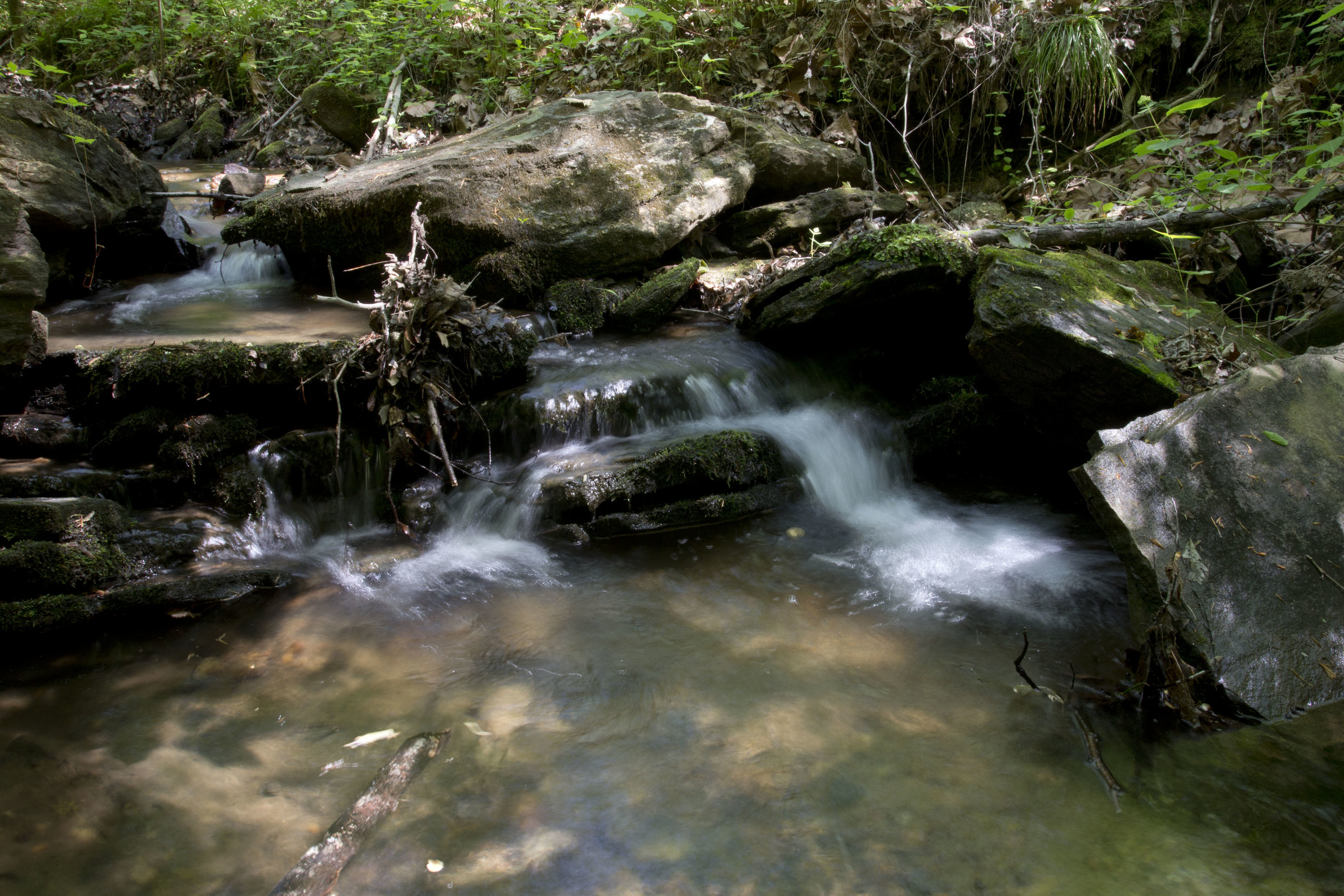 Box Creek Cascade 2.jpg