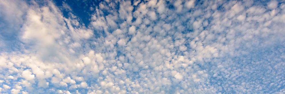 Common Sky
