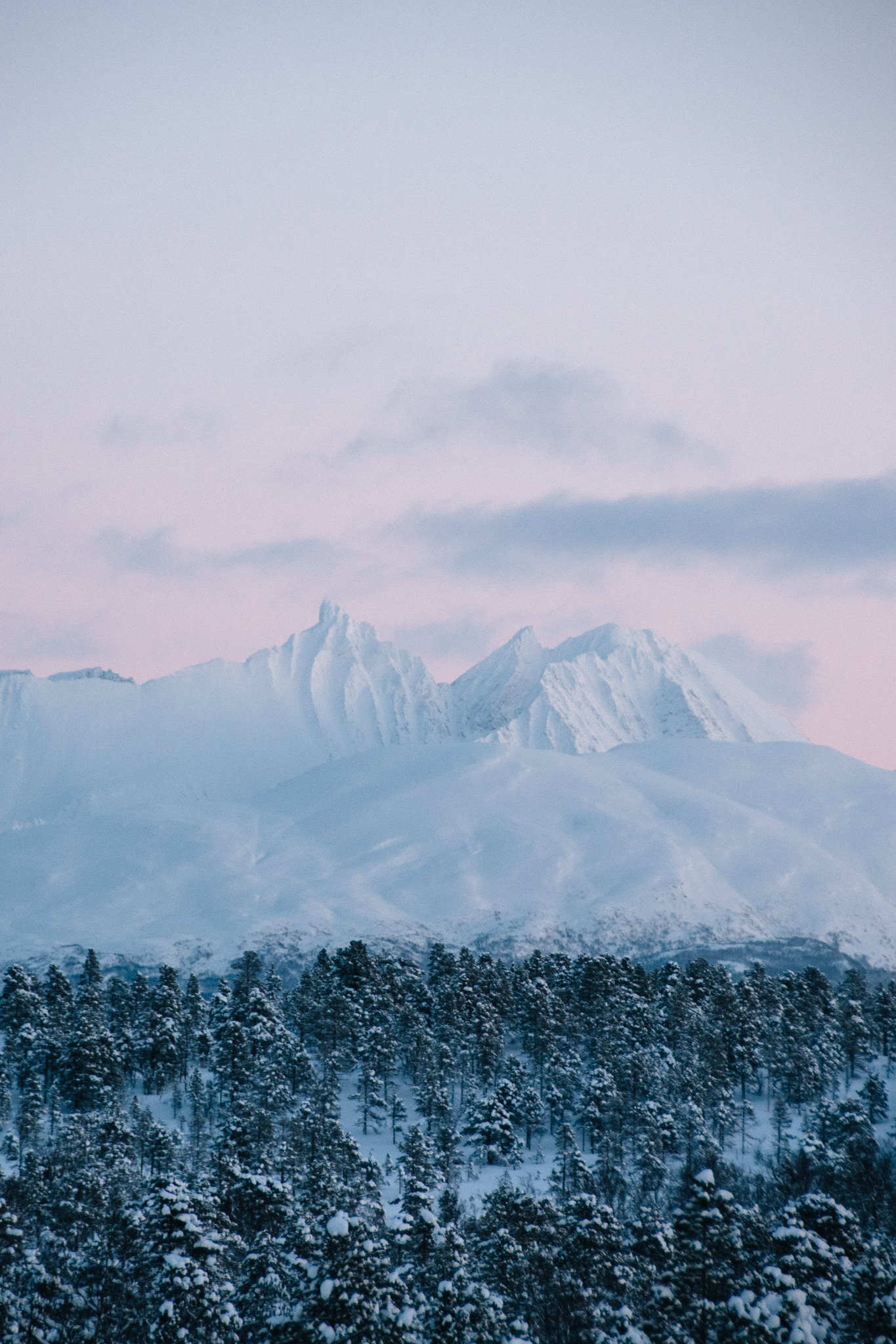North Norway.jpg