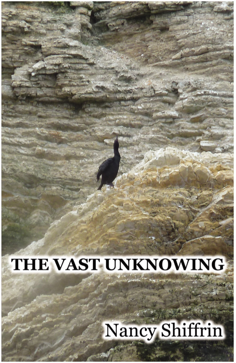 thevastunknowing.PNG
