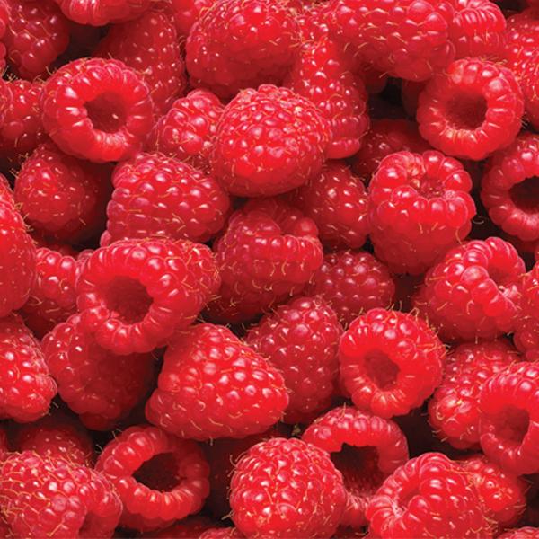 raspberry -