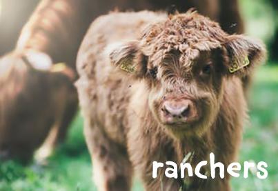 Ranchers.jpg