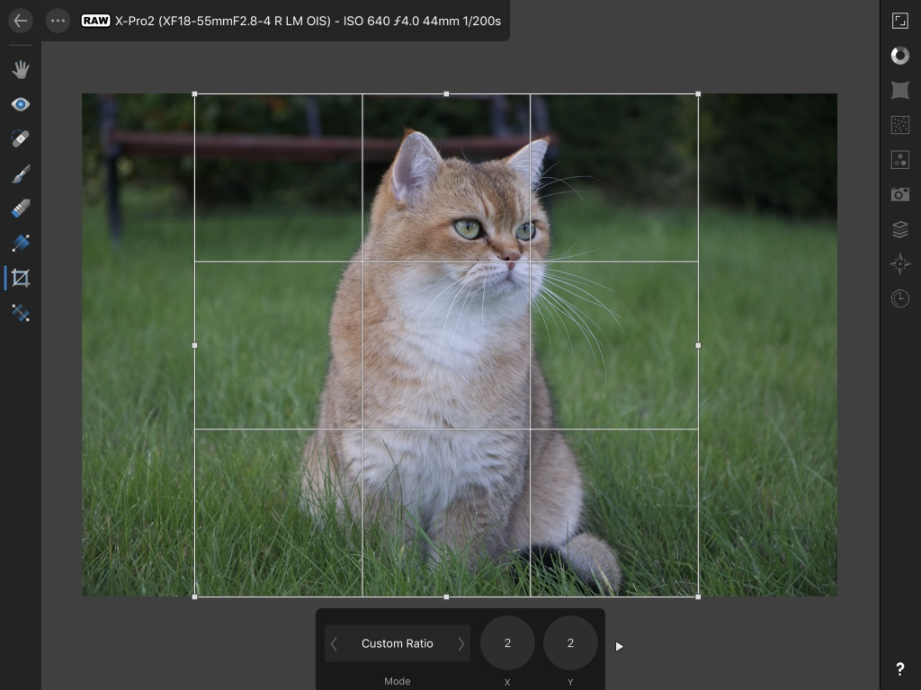 Cropping in Affinity Photo for iPad