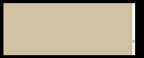 badgley mischka logo.png