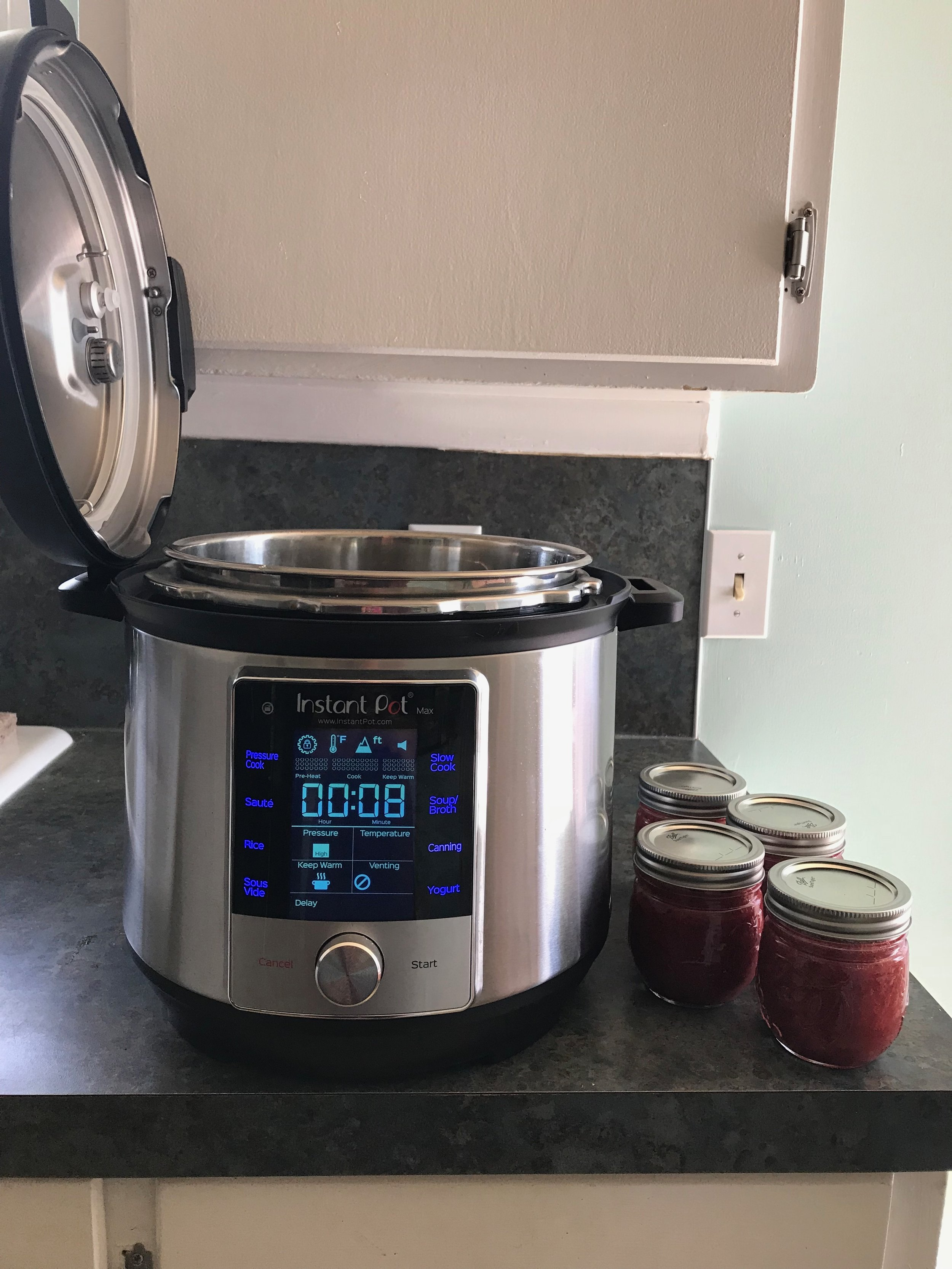Smart Hint for Your Instant Pot Lid | Didn't I just Feed You Podcast.jpg