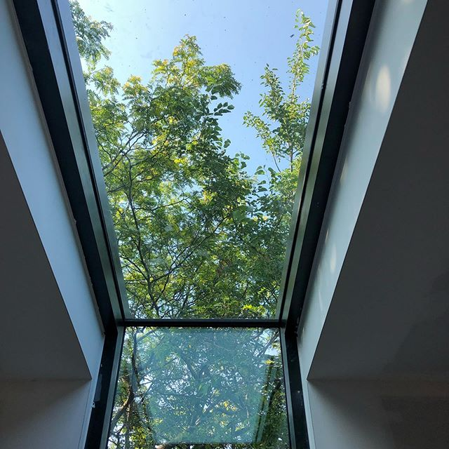 The sky and the trees ... all in one incredible skylight window.  Great job pulling it off @inlinedesignbuild and @division_8_openings. .  #sky #skylight #window #view #trees #urban #bedroom #architecture #architecturephotography #interiordesign #design #transforminghomes #transforminglives #renovation #construction
