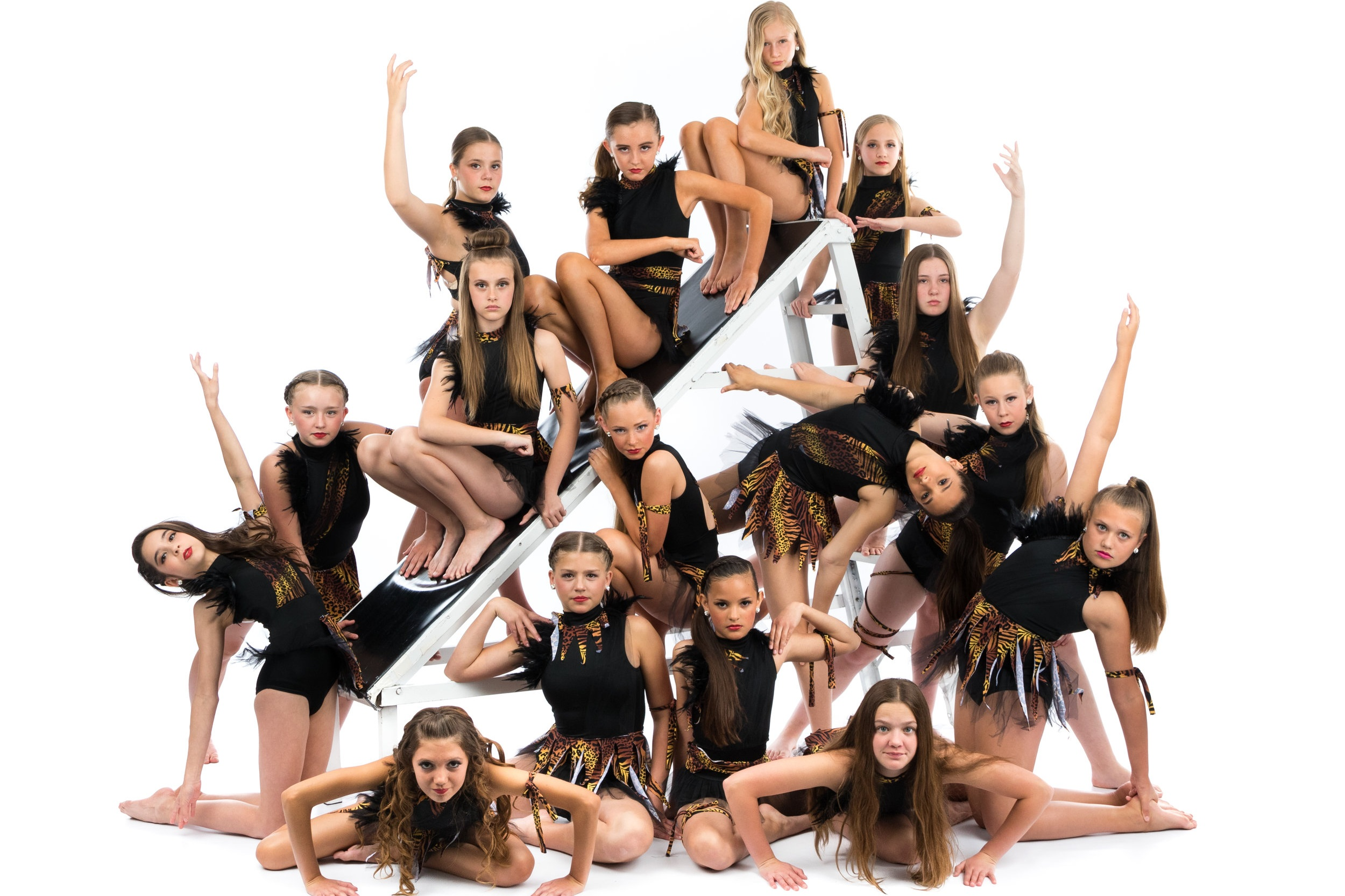 PERFORMING - Just Dance's Competitive Companies, run by Ellie Smith, offer dedicated dancers the unique opportunity to master dance technique, artistic expressiveness, and performance ability at the finest levels by representing the academy both locally and nationally in high exposure performances and competitions. Through this highly intensive and positive experience, Company dancers strengthen their self-esteem while developing critical life skills of responsibility, self-discipline, dependability, good sportsmanship, and teamwork. Our Companies consistently receive awards and praise.