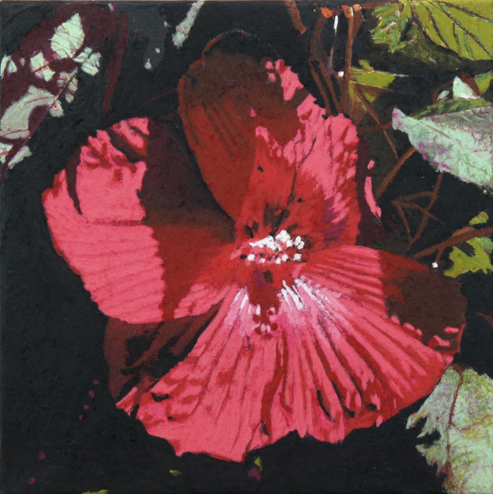 """hibiscus  ll 12""""x12""""  (sold)"""