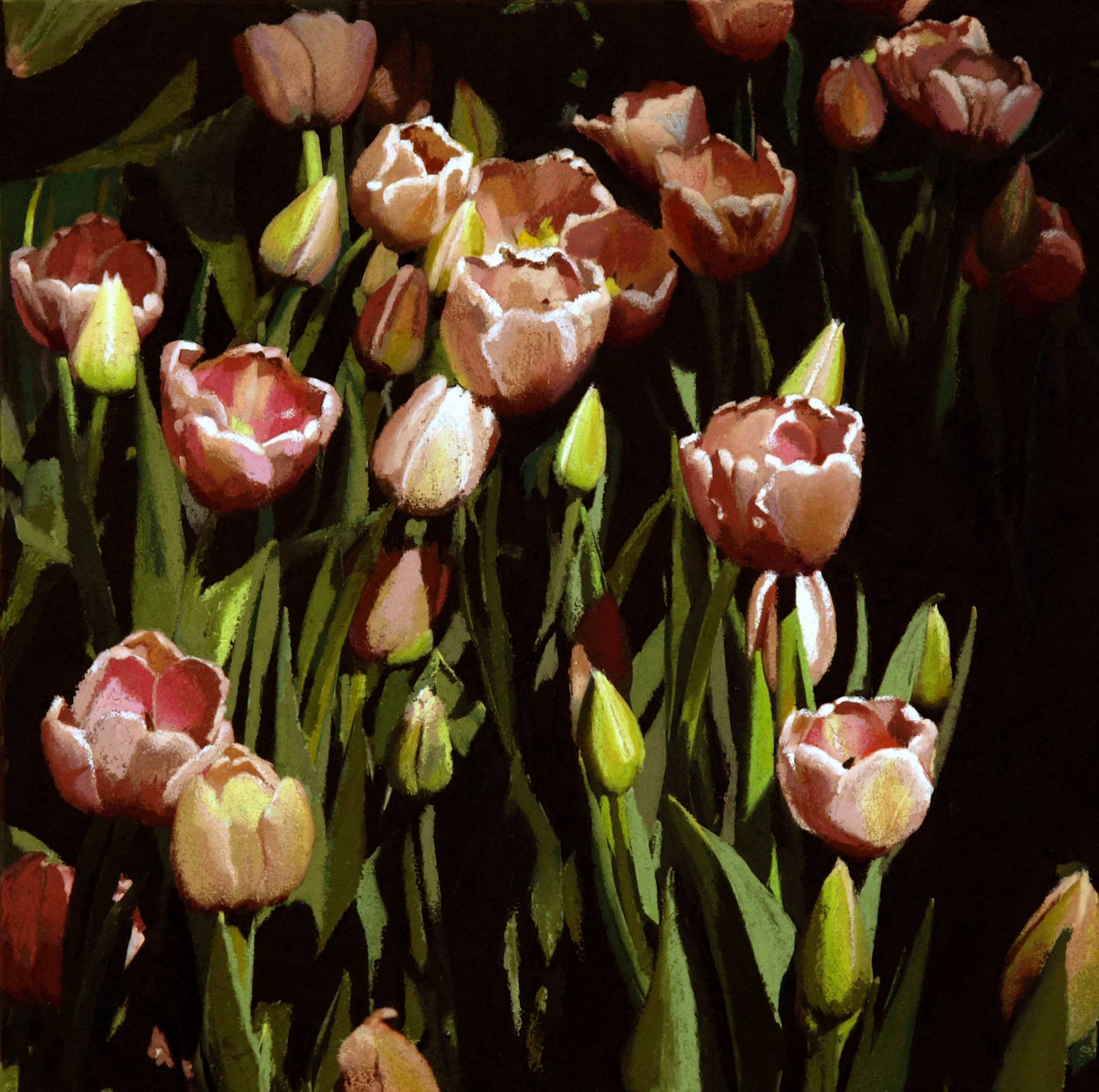 """pink tulips 20""""x20""""(sold)"""