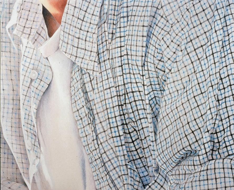"""^^ blue plaid shirt  27""""x31"""""""