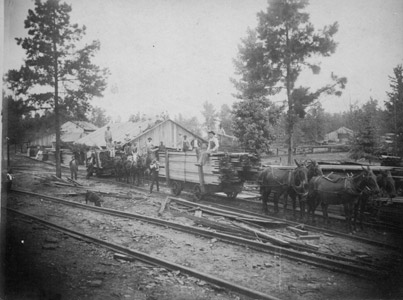 Grogan sawmill in the 1890's