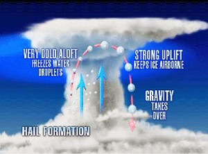 Graphic of hail formation. Source:  Weather Imagery .