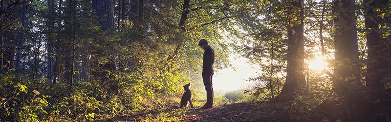 man dog forest.jpg