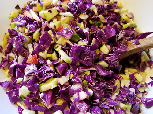 red cabbage apple radish salad.jpg