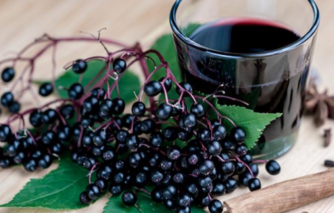 Beat the Flu! - Dr. Allison's Tasty Homemade Elderberry Syrup