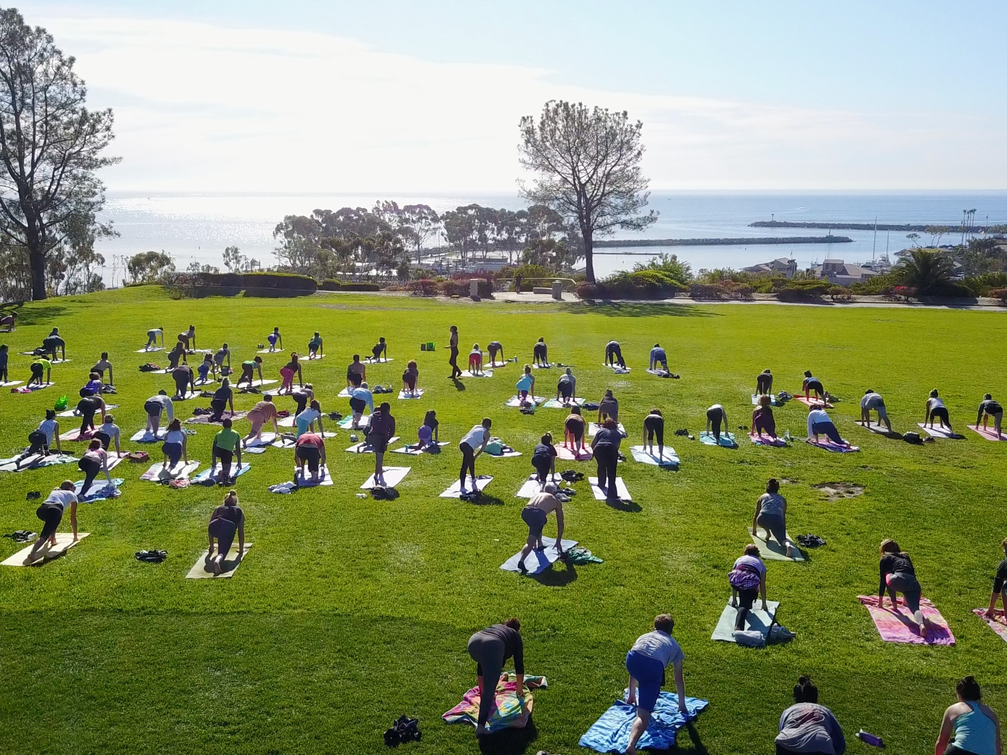 iHeartYoga in the Park -