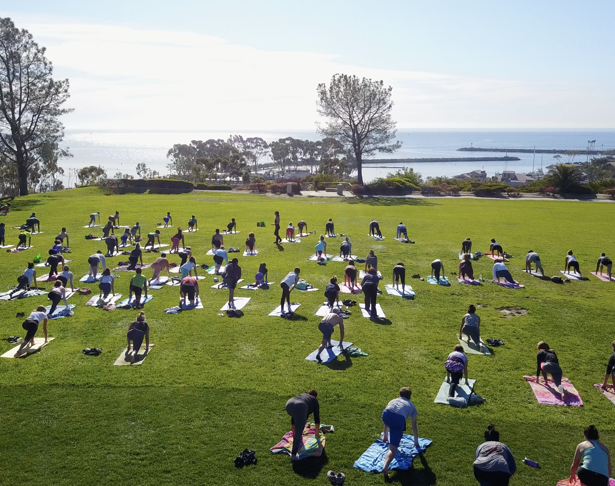 iHeartYoga in the Park 4-2-19c (1).png
