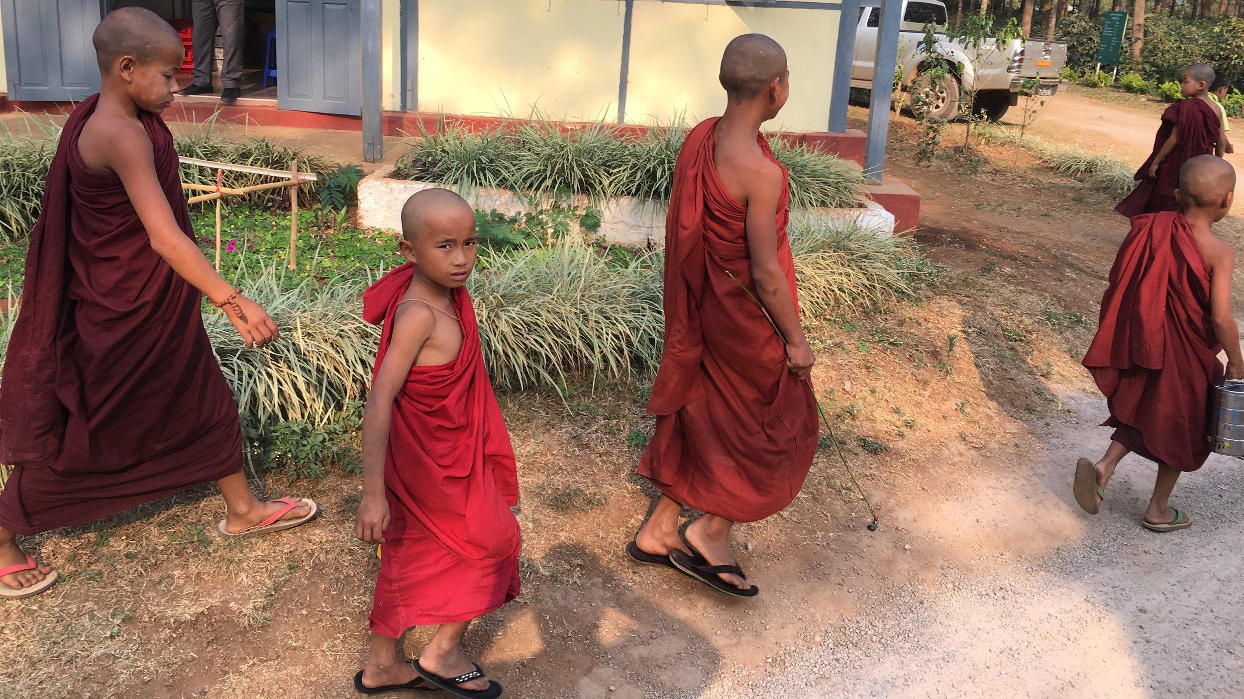 myanmar monk.JPG