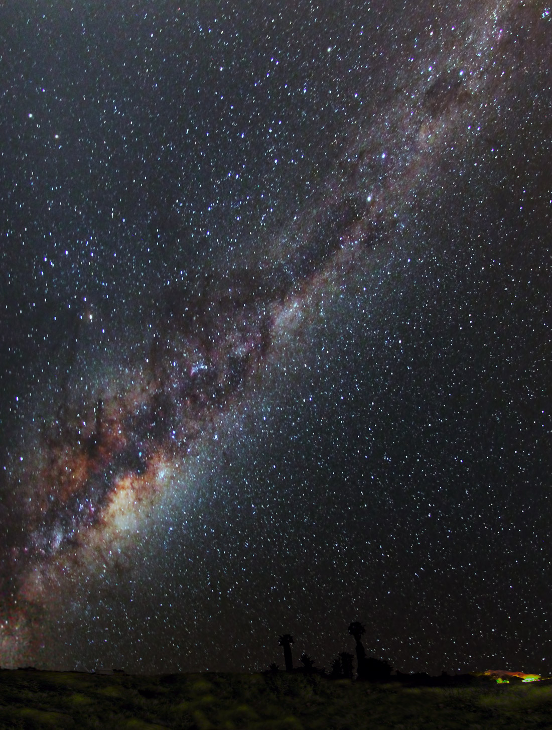Dindima Wines _Trevor's Milky Way with emu1100px.jpg