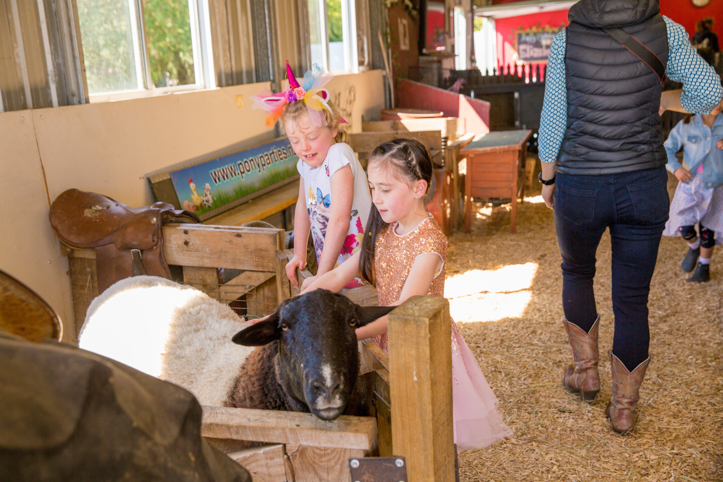 Pony Parties - Elizabeth-28.jpg
