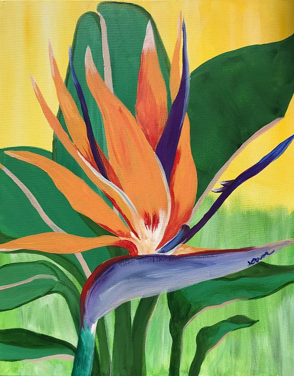 Bird of Paradise_opt_Devon Cannon.jpg