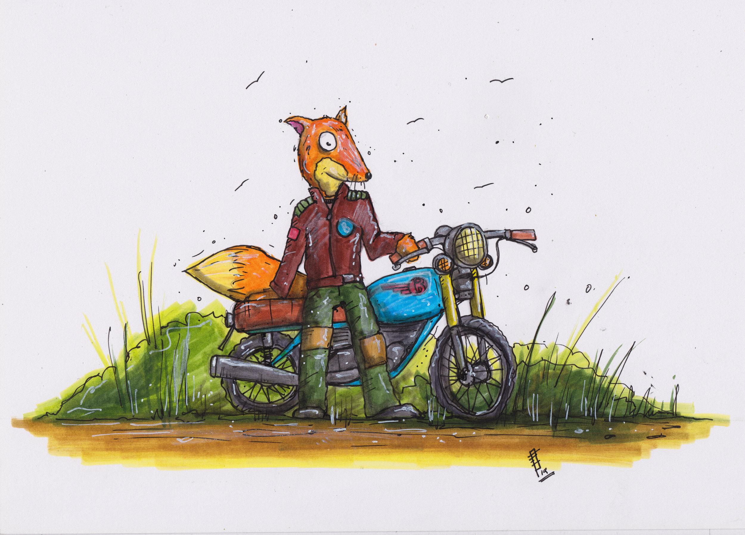 foxAndBike.jpg