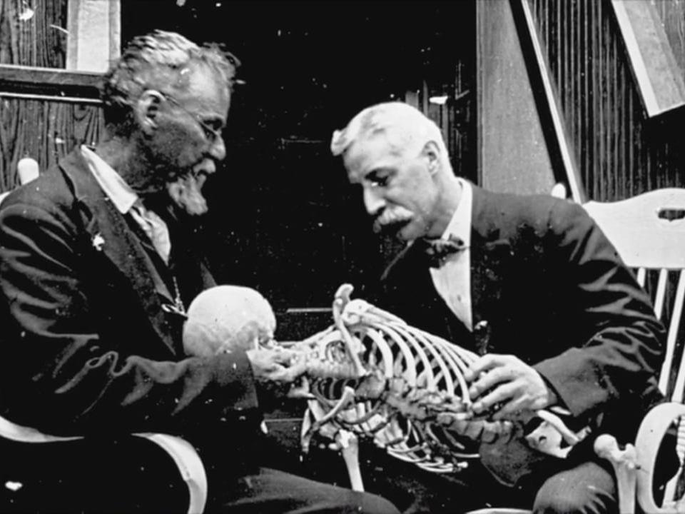j martin littlejohn, founder of British school of osteopathy